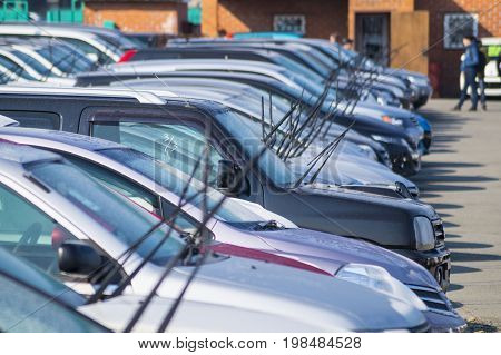 Windshield wipers are waiting for the rain on cars standing in the car market.