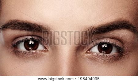 Close-up Macro Of Beautiful Female Brown Eye With . Clean Skin, Fashion Naturel Make-up. Good Vision