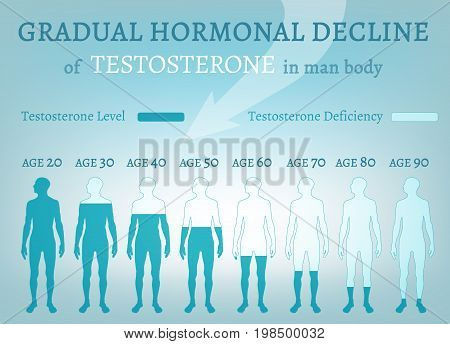 Testosterone Hormone Level. Beautiful medical vector illustration in blue colours. Scientific, educational and popular-scientific concept. Usieful medical infographic.