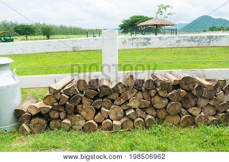 Stack Of Chopped Log, Firewood