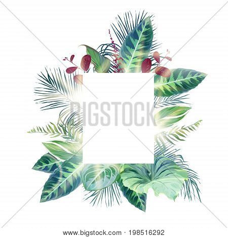 Exotic tropical square frame arranged from plants and palms. Green, emerald and burgundy red leaves vector design set. Golden sun flares and luminous light. All elements are isolated and editable