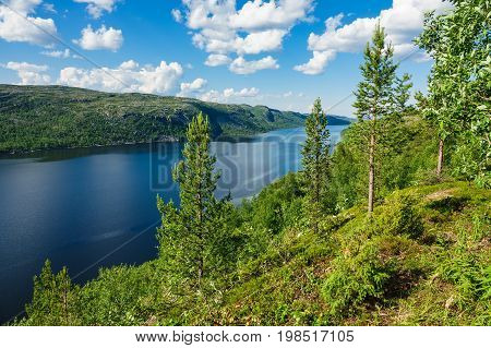 View to the Varangerfjord in Norway with trees.