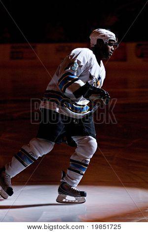 PHOENIX, AZ - DECEMBER 18: Phoenix Roadrunners defenseman Brett Peterson (#28) during introductions before the ECHL hockey game with the Utah Grizzlies on December 18, 2008 in Phoenix, Arizona.