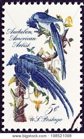 USA - CIRCA 1967: A stamp printed in USA shows Columbia Jays by John James Audubon, circa 1967.