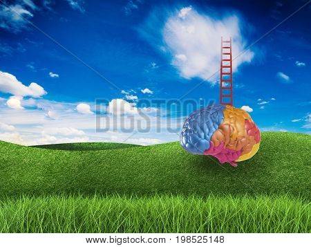 ladder to success concept with 3d rendering colourful brain and ladder