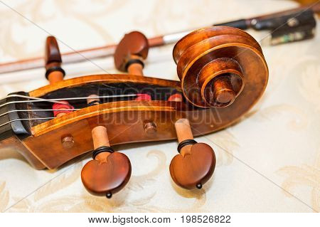 fingerboard of double bass, string instruments concept - close-up on scroll of double-bass, classical music orchestra, violin, head, nut, machine heads, neck, string, macro