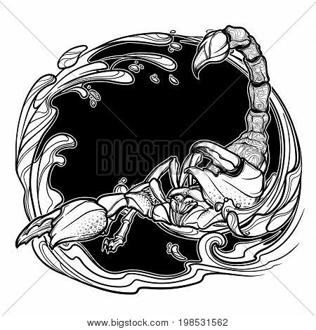 Alchemy element of water. Zodiac sign Scorpio. Detailed realistic scorpio hand drawing. Sketch isolated on white background. Concept art for tattoo design, horoscope, coloring book for adults page.