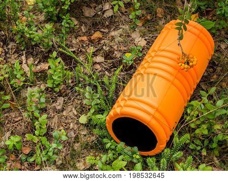 Orange foam roller in forest against green grass and leaves background with cluster of berries hanging above