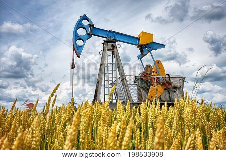 Oil pump in wheat oil industry equipment