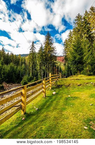 Wooden Fence In Forest Camping Place