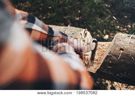 Woodcutter In A Plaid Shirt And A Sharp Ax In The Hands Of A Close-up Is Going To Cut A Tree