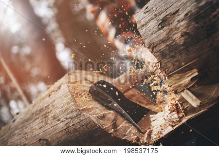 Woodcutter In A Plaid Shirt Chopping A Big Tree, Chips Fly Apart