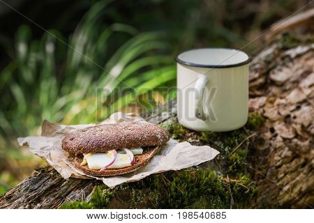 Snack With Bacon (pork) And Hot Drink In The Morning Forest. Copy Space