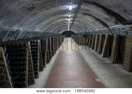 Interior Of Cellar With Sparkling Wine