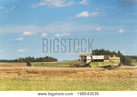 Combine harvester harvest ripe wheat on a farm in Czech Republic. Harvest time. Cultivation of grain on an agricultural farm