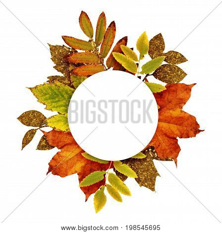 Autumn frame with dry and gold glitter leaves isolated on white background