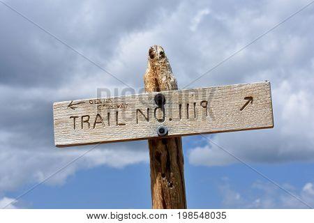 Trail sign near the Devil's Causeway in the Flattops Wilderness in Colorado