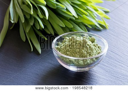 Fresh Young Barley Grass With Green Barley Grass Powder