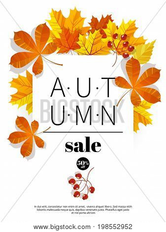 Autumn sale. Fall season sale and discounts banner. Colorful autumn leaves headline and sale invintation on wite background. Vector illustration