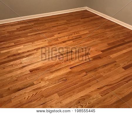 Beautiful wood floor installed. Red oak hard wood floor. Wooden floor just installed. Bedroom in hardwood floor,