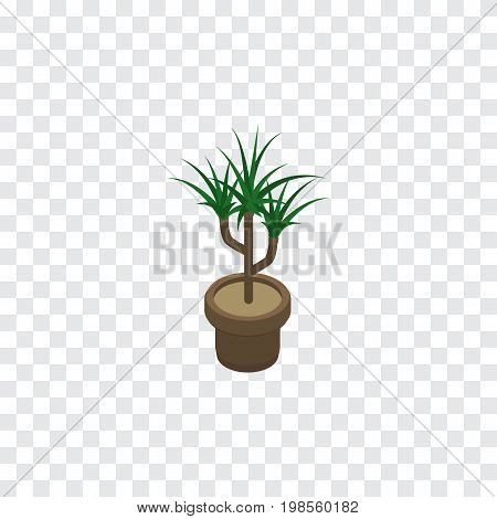 Houseplant Vector Element Can Be Used For Plant, Flowerpot, Botany Design Concept.  Isolated Plant Isometric.