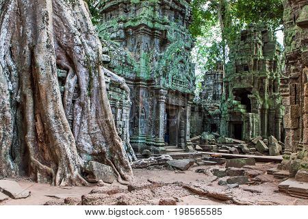 Ta Phrom at Angkor Wat Cambodia historical architecture of Khmer