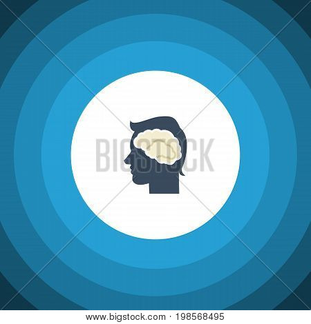 Brainstorming Vector Element Can Be Used For Intellect, Brainstorming, Brain Design Concept.  Isolated Intellect Flat Icon.