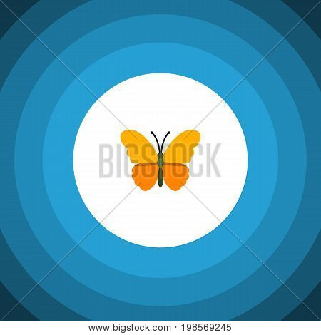 Butterfly Vector Element Can Be Used For Butterfly, Monarch, Moth Design Concept.  Isolated Danaus Plexippus Flat Icon.