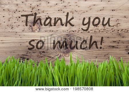 English Text Thank You So Much. Spring Season Greeting Card. Bright Aged Wooden Background With Gras.