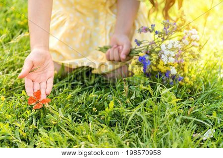 Take care of nature. Close up of childish hand reaching out the butterfly sitting on grass. Girl is kneeling and holding bouquet of wind flowers