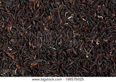 Texture of Darjeeling tea cose up. Macro photo