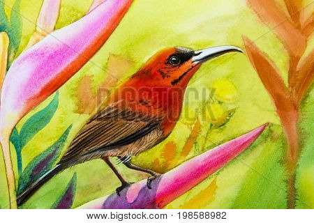 Watercolor landscape original painting on paper colorful of Sunbird on flower lobe amidst beautiful nature and emotion in the sky background with postcard congratulationnew year