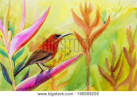 Watercolor landscape original painting on paper colorful of Sunbirds on flower lobe amidst beautiful nature and emotion in cloud on the sky background with postcard congratulationnew year