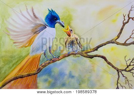 Watercolor landscape original painting on paper colorful of mother bird baby bird couple bird on a branch amidst beautiful nature and emotion in cloud on the sky background.