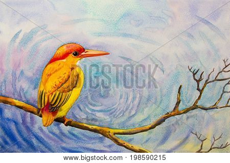 Watercolor landscape original painting on paper colorful of alone yellow bird on a branch amidst beautiful and emotion on water background.