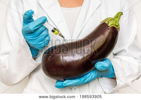 GMO scientist injecting liquid from syringe into eggplant - genetically modified food concept