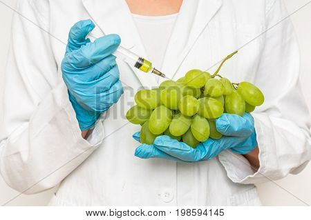 Gmo Scientist Injecting Liquid From Syringe Into Grapes