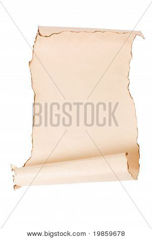Vintage roll of parchment isolated on white