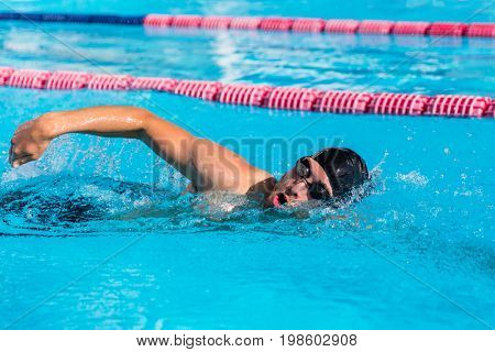Swimmer man sport training at swimming pool. Professional male athlete doing crawl freestyle stroke technique training cardio at fitness centre.