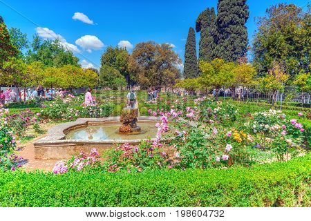 Rome, Italy - May 08, 2017: View On Park In The Hill Of Palatine-  Roman Forum. Rome.  Italy.