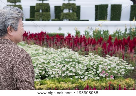 Asian Elder Woman Standing In Garden. Elderly Senior Female Resting And Relaxing In Park