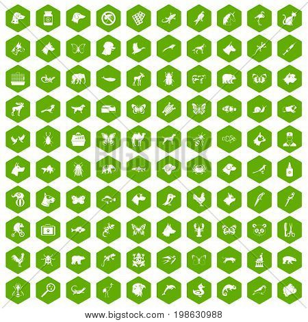 100 animals icons set in green hexagon isolated vector illustration