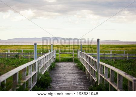 Amazing Calm Landscape View Of A Swamp From A Wood Balcony