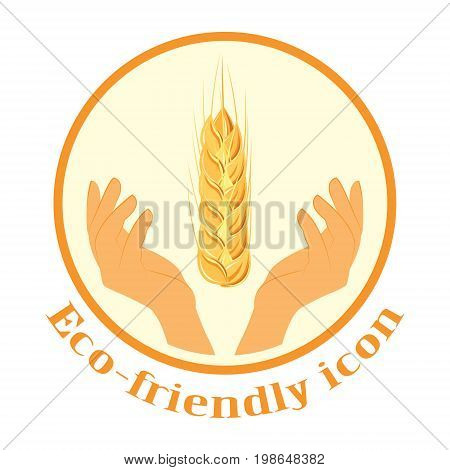 Wheat spikelets in the hands. The icon. Agricultural wheat, symbol, isolated on white background. Organic agricultural crops or a label with beer. Vector spikelets of wheat.