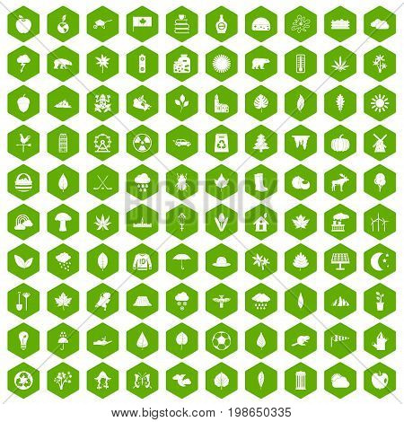 100 leaf icons set in green hexagon isolated vector illustration
