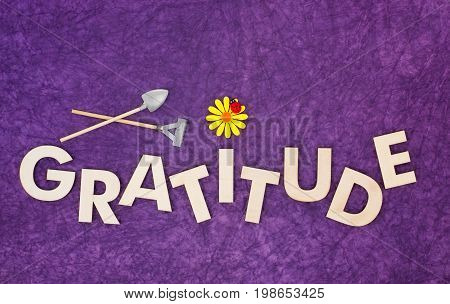 Top view of capital letters made of wood spelling the word gratitude on purple textured background with yellow daisy ladybug miniature shovel and rake cultivate gratitude concept.