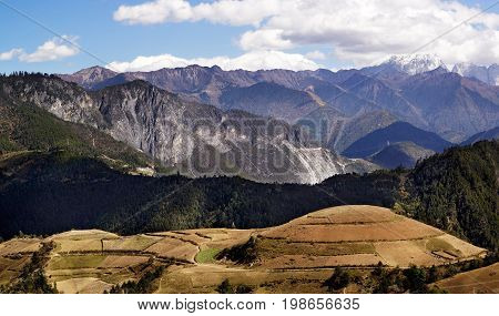 Panorama View Of Mountains And Yellow Agriculture Farmland In Yading National Level Reserve, Daochen