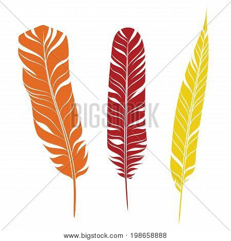 Elegant feathers set isolated on white background. Element for your design, decoration and artwork. Silhouette of three plumes different colors. Orange, red and yellow plumelets. Vector.