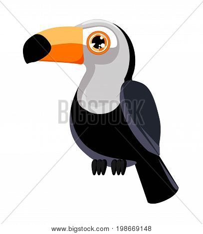 Toucan vector illustration. Toucan isolated on white background.