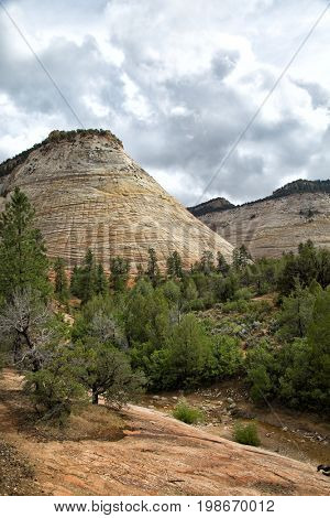 Checkerboard Mesa at Zion National park in Utah, United States